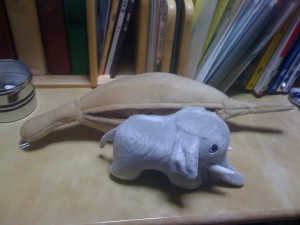 象さんが出てきた!