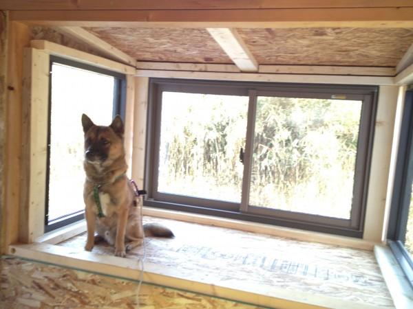 ニッチさんが入るぐらい大きい出窓