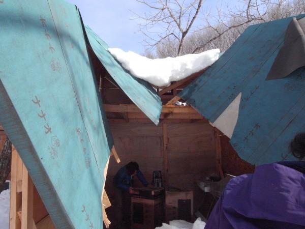 見事にまっぷたつになった屋根
