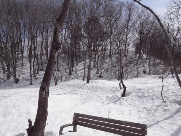 ベンチが埋まるほどの雪。