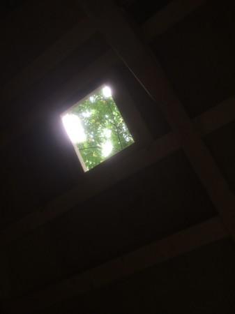 屋根に穴を開けると木漏れ日がシャレオツ。